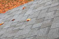 Autumn leaves on an asphalt roof