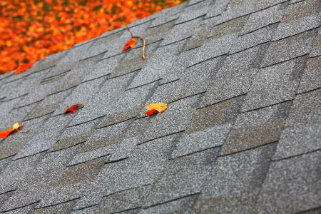 How To Clean Mold Off Roof Shingles