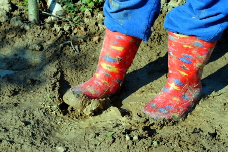 5 interesting facts about clay soil for All about soil facts