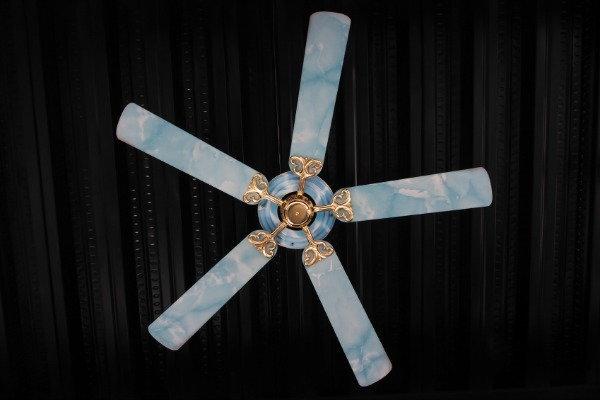 painted celing fan