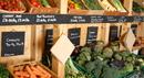 organic grocery.jpg