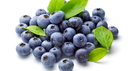 blueberries_000014200421_Small.jpg