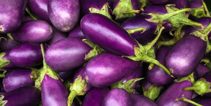 eggplant_000027011422_Small.jpg