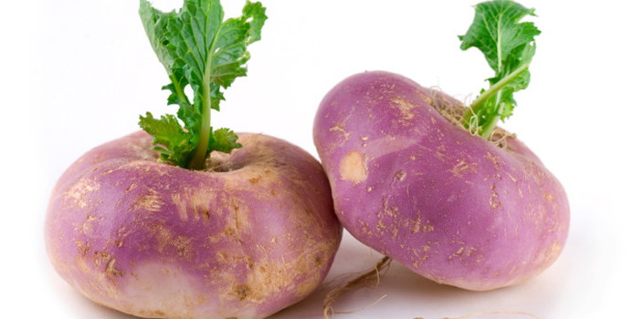 turnip_000009642135_Small.jpg