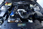 ENGINE - 4.6 ltr 281 qu in 12valve SOHC