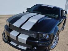 mygt500's Mustang - May 21, 2009