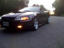 00 Mustang 4
