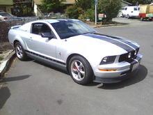06 V6 Pony