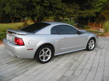 My old stang