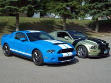 2 Mean Mustangs
