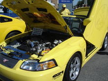 Best in Show 199-2004 Cobras! (yes with Lambo doors)!