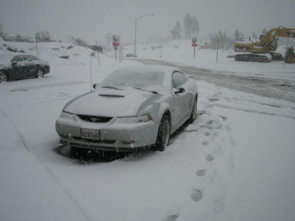 Stuck on Donner Pass.......