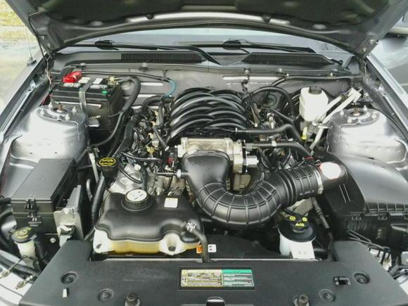 Ford 4.6L 3V SOHC V8