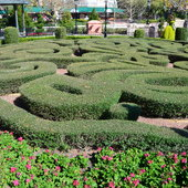 Knot garden in France.