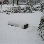 The garden bench is almost hidden by the snow.