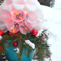 """Christmas / Winter Interest 2013. Live greens with home-made LED """"sparkle ball"""" in glazed pot. This arrangement was placed on the half wall beside our front porch steps."""