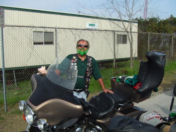 green 331mean green