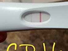 8-2016 ovulation