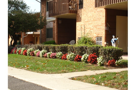 Briarcrest Gardens In Hershey Pa Ratings Reviews Rent