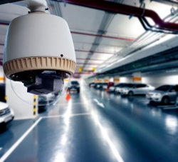 Vehicle Theft Report