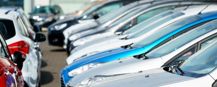 used car lot, used vehicles