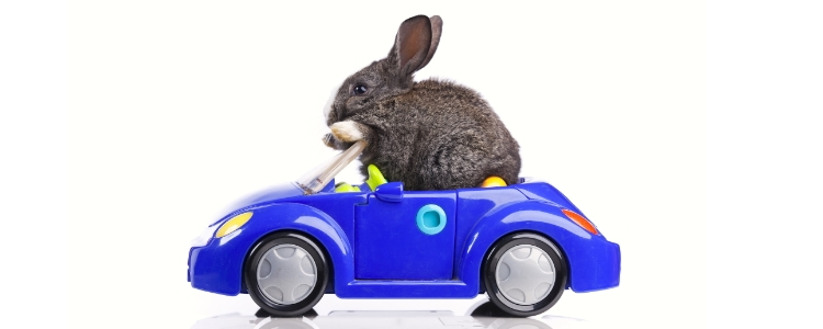 Buying a Car on Easter Weekend