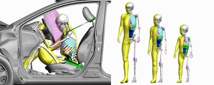 Toyota adds Child Crash Test Dummy Models