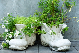 Ceramic boots with plants inside