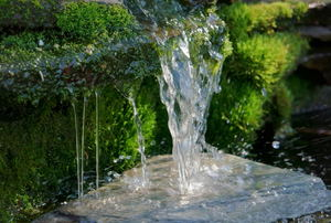 water falling from a fountain with greenery in the background