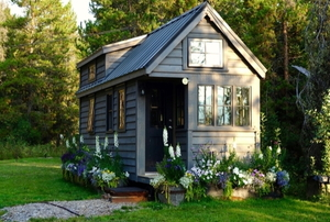 tiny wooden home near forest