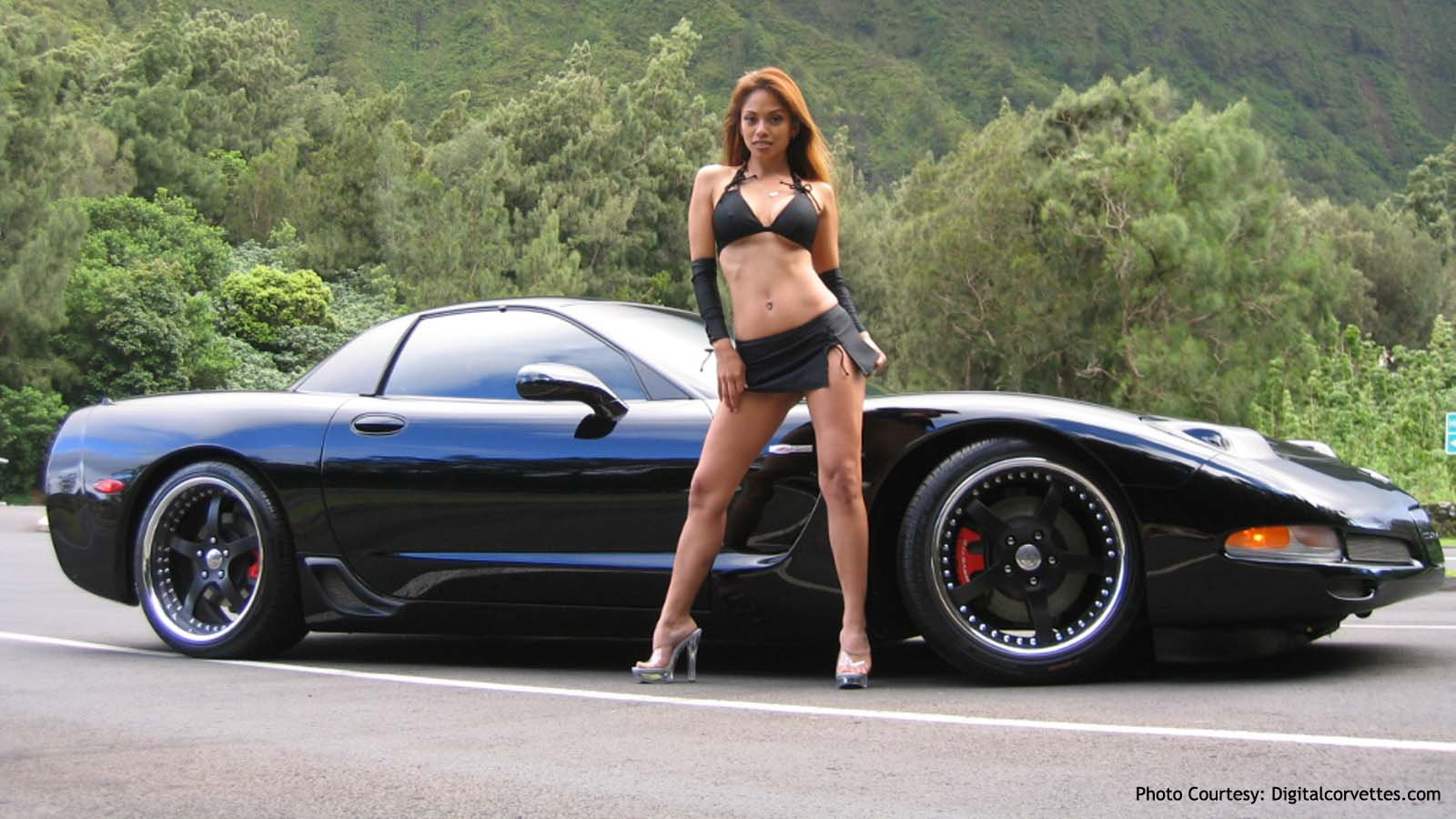 Corvette in Nature