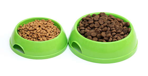 Image of two bowls of kibble.
