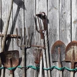 Rusty garden tools