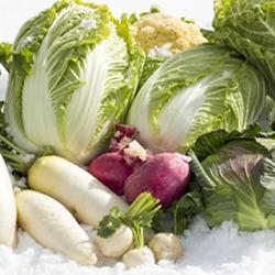 Vegetables on Snow
