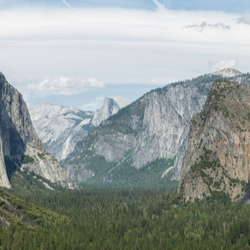 Yosemite Mountains and Treetops