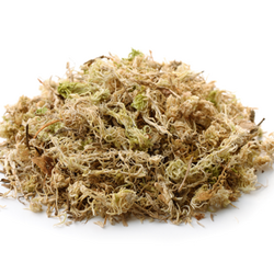 Mound of Dried Sphagnum Peat Moss