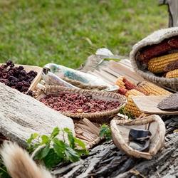 Native American foods