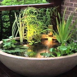 Mini pond container with lights on a deck