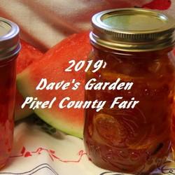 County Fair logo and jars of jam