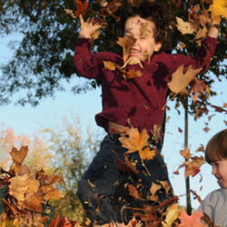 children playing in fallen leaves