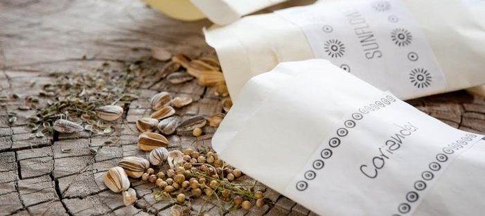 Paper seed packets spilling their contents onto stone tiles
