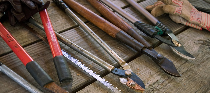 Bladed Garden Tools on Wood Table