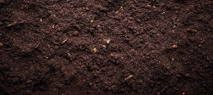 soil - Garden Dirt