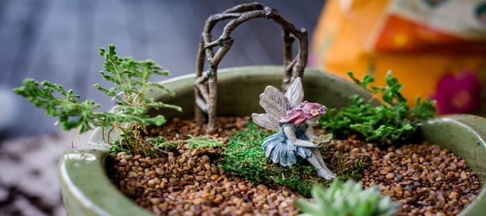 Fairy Garden in Small Pot