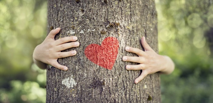 hands hugging a tree with a heart