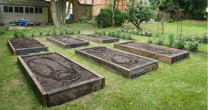 a group of raised beds