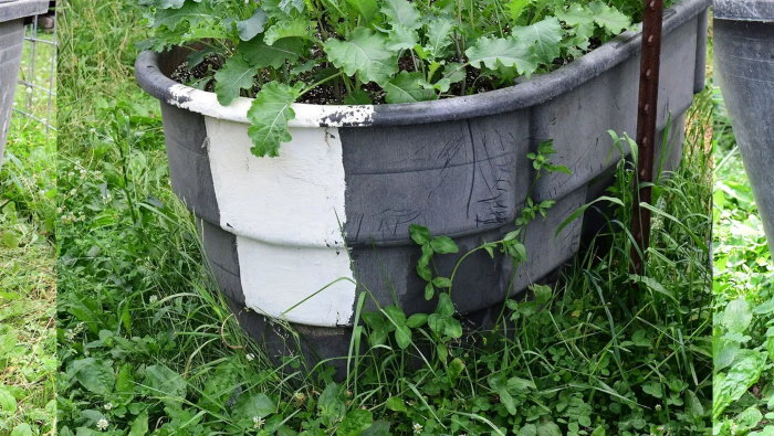 old water trough planter