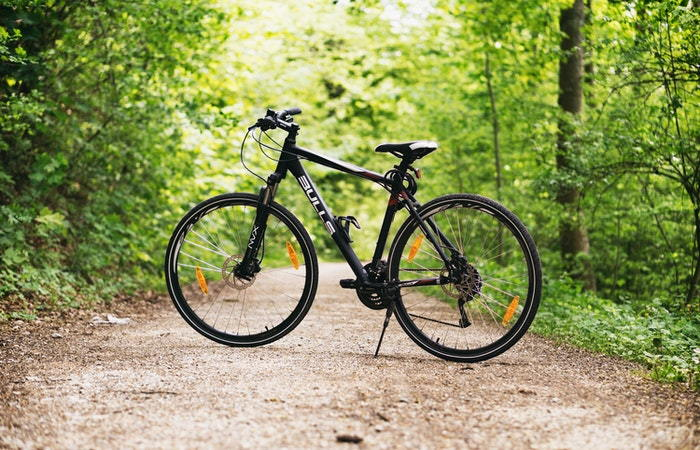 bicycle on a wooded trail