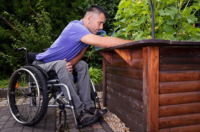 Wheelchair user tending a raised bed