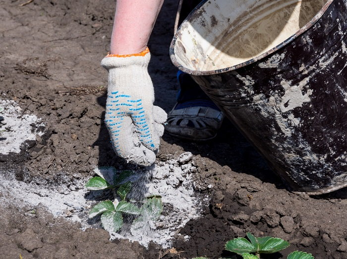 wood ash can make for a great fertilizer in the garden
